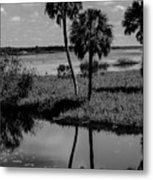 Myakka River Reflections Metal Print