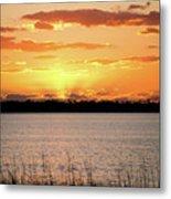 Myakka Sunset Metal Print