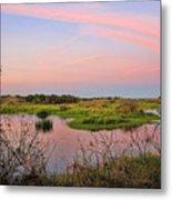 Myakka Wetlands By H H Photography Of Florida Metal Print