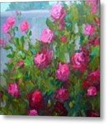 Myback Yard Roses Metal Print