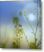 Mysterious Forest At Dusk Blue Metal Print