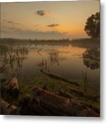 Mysterious Morning Time In Swamp Area. Landscape Metal Print