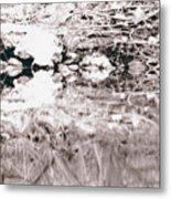 Mysterious Waterline Metal Print