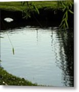 Mystery  Pond In The Green Metal Print