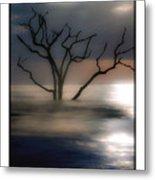 Mystery Tree Metal Print