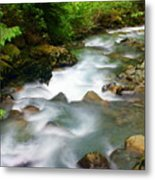 Mystic Creek Metal Print