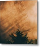 Mystical Woods Metal Print