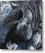 Nahokey Metal Print