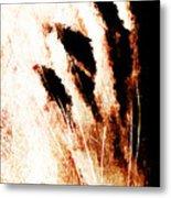Nails Metal Print by Andrea Barbieri