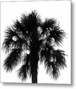 Naked Palm Metal Print
