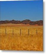 Namib Desert 3 Metal Print