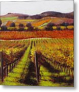 Napa Carneros Vineyard Autumn Color Metal Print
