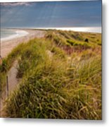 Napatree Point Preserve Metal Print by Susan Cole Kelly