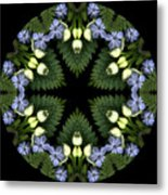 Narcissus Group 1 Metal Print