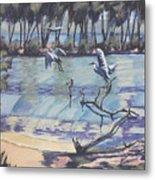 Narrabeen Lakes 2 Metal Print