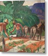 National Park Service - Tropical Country Metal Print