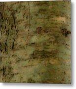 Native Tree Metal Print
