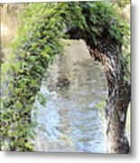 Natural Archway Over Hillsborough River Metal Print