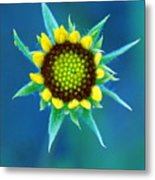 Natural Art Metal Print