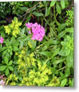 Natural Background With Vegetation And Purple Flowers. Metal Print