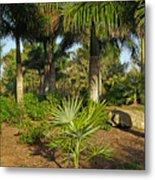 Natural Beauty Of Florida Metal Print
