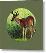 Natural Beauty - Original Version Metal Print