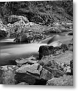 Natural Contrast Black And White Metal Print