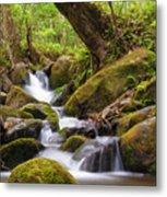 Natural Flow Metal Print