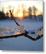 Natural Ice Animals In Winter Metal Print