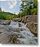 Natural Masterpiece Metal Print