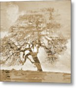 Natural Tree Metal Print