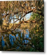 Naturally Florida Metal Print