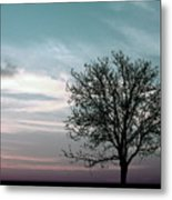 Nature - Early Sunrise Metal Print