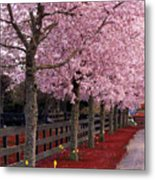 Nature - Pink Trees Metal Print