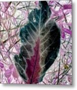 Nature Abstract Of Leaf And Grass Metal Print