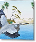 Nature Coast 2 Metal Print