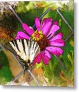 Butterfly In Love Metal Print