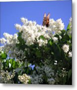 Nature In The Wild - Bathing In Blooms Metal Print
