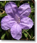 Nature In The Wild - Purple Paper Metal Print