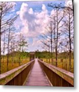 Nature Path Metal Print