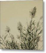 Nature Scenery In Lijiang China Metal Print
