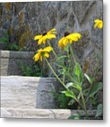Nature Steps It Up Metal Print