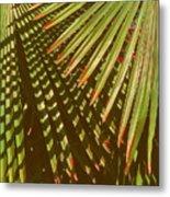 Nature Up Close 6 Metal Print