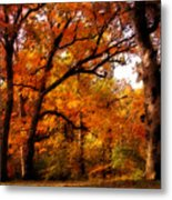 Nature's Canopy Metal Print