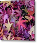 Nature's Confetti Metal Print