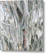 Natures Drapery At Okefenokee Swamp Metal Print