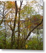 Nature's Expression-11 Metal Print