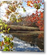 Nature's Expression-18 Metal Print