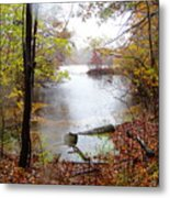 Nature's Expression-7 Metal Print
