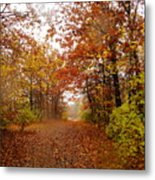 Nature's Expression-8 Metal Print